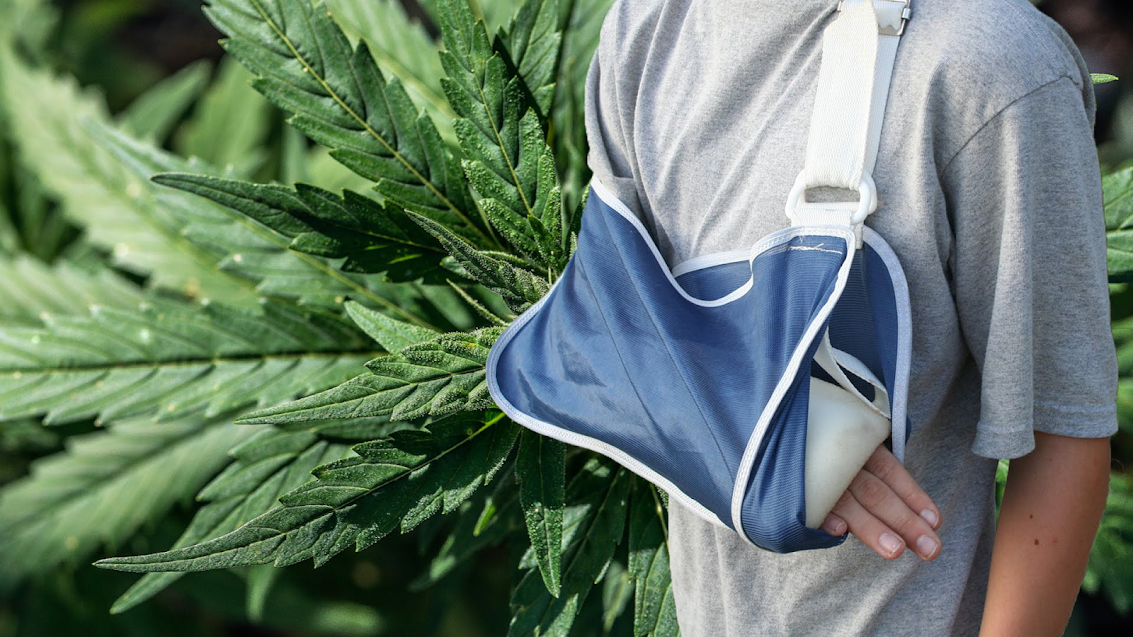 Can marijuana help heal broken bones?