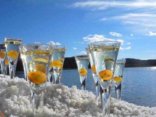 Armonia ed equilibrio in un bicchiere di sole62