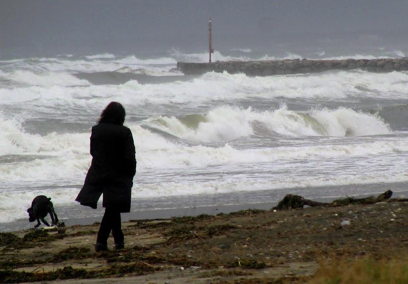 Mare e vento. di Elisabetta Di Girolamo