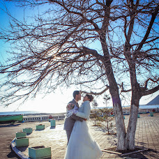 Wedding photographer Alevtina Shvidkova (Shvidkova). Photo of 27.12.2014