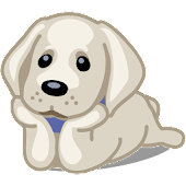 Pets Adoption: Adopt Dog, Cat Or Post For Adoption Android APK Download Free By Pavel Poley