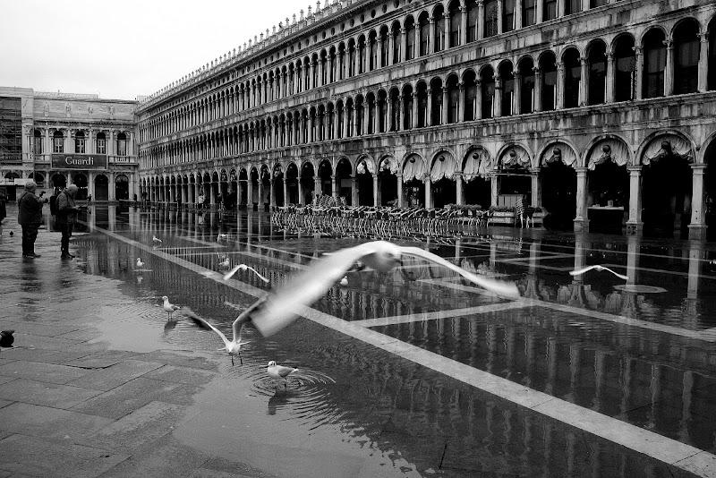 Volo a San Marco di Andrea F