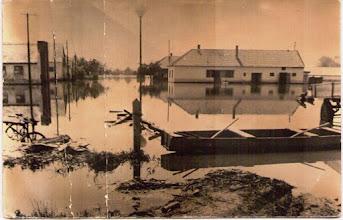 Photo: Az EFSz telepe, jobbról Végh Elemér állatorvos szolgálati háza.