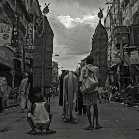 Beginning of a Rally  by Ritwik Ray - City,  Street & Park  Street Scenes ( city scene, events, street scene, photography, street photography )