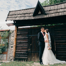 Wedding photographer Alena Danilyuk (AlenaDanyluk). Photo of 24.02.2016