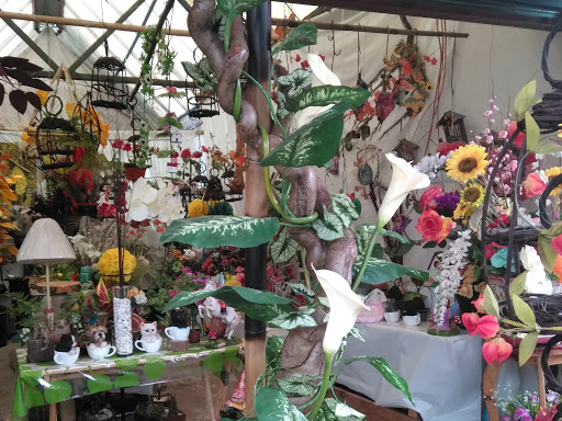 Mercado De Plantas Y Flores Cuemanco Centro Comercial En Ciudad De