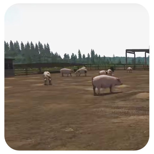 Farming Animals Stocking Feed Farming Simulator
