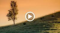 Chuyện Hẹn Hò – Tân Cổ – Nhạc Beat