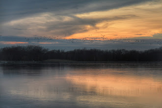 Photo: The geese return and with them spring time..