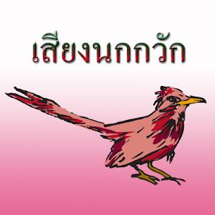 Bird's nest - náhled