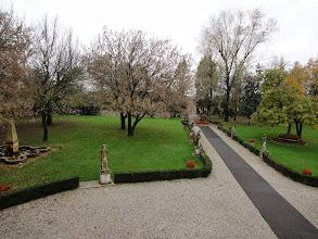 Photo: Garden of the villa nearby