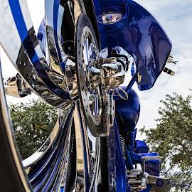 Harley Davidson by Don Young - Transportation Motorcycles ( motorcycle, harley, color, blue, custom, harley davidson,  )