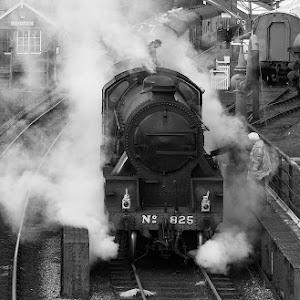 train5.jpg
