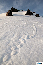 Photo: It looks that there was quite windy on the slopes of Camel - a nice case of inverse steps
