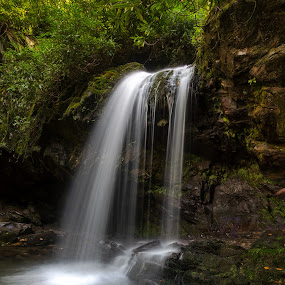 Grotto Falls by Bill Frische - Landscapes Waterscapes ( mountain, falls, tennessee, grotto, waterfall, national, smokey, water, park )
