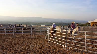 Photo: Les 2 cavaliers de la 1ère équipe à passer... C'était sympa à voir, et pas facile pour les cowboys ; plusieurs équipes ont été éliminées, et aucunes n'a eu le temps de faire passer toutes les vaches...!