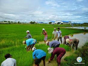 Photo: Land preparation - CFPAR for Takeo province farmers , Lvea Village, Ang Popel commune, Korng Pisey district, Kampong speu province (28-29 Aug2014)