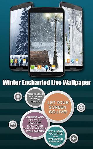 冬の魅惑壁紙