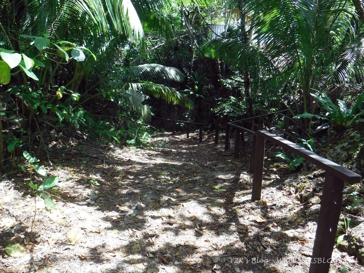 Il sentiero in discesa che porta ad una delle grotte di Niue