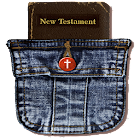 holy bible new testament icon