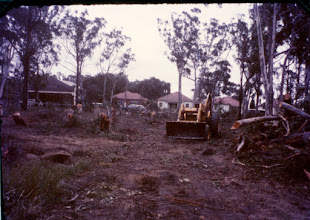 Photo: 1966 land clearing by machine
