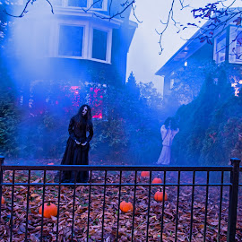Withches of Seattel by Will McNamee - Public Holidays Halloween ( patty_j_ball@hotmail.com; donaldbarber11@msn.com; donaldbarber11@msn.com; d3a1@aol.com;  postholes2002@yahoo.com; )