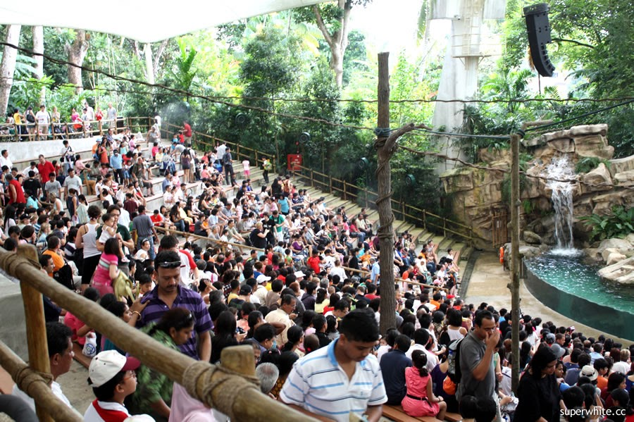 Singapore Zoo Crowed