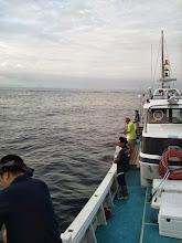 Photo: 台風が去って、お魚さんたちがお口をあけて待ってますよー! ガンバりましょっ!