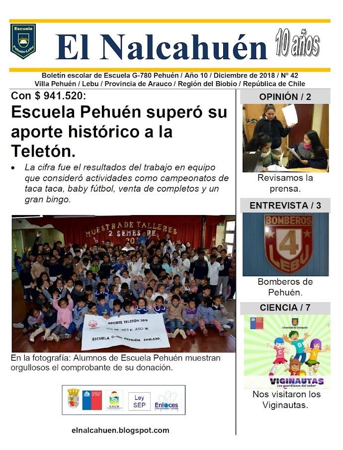 El Nalcahuén IMPRESO N° 42 (Diciembre de 2018)