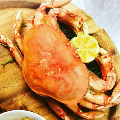 2Lb Dungeness Crab