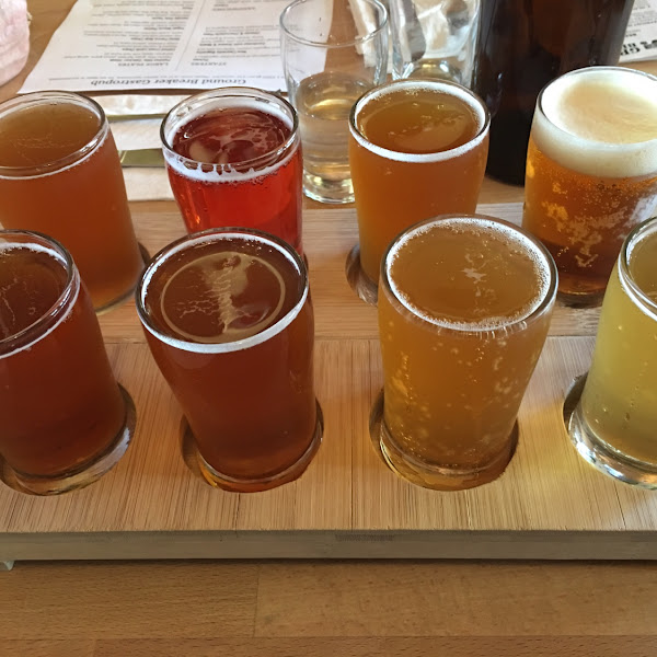 Flight of all 8 gluten free beers (some seasonal)!