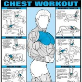 All Chest Exercises
