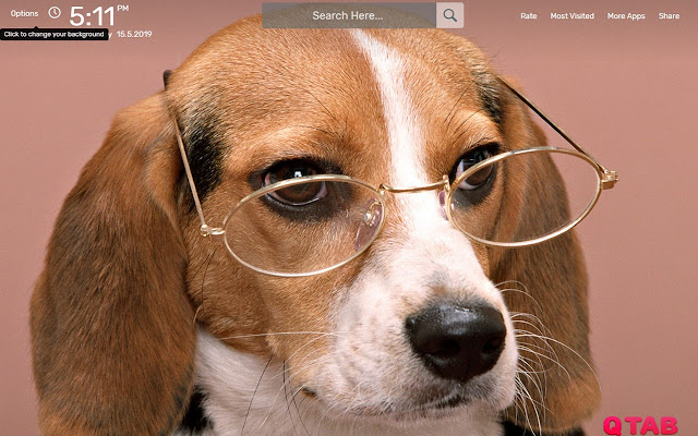 Beagle Wallpapers HD Theme