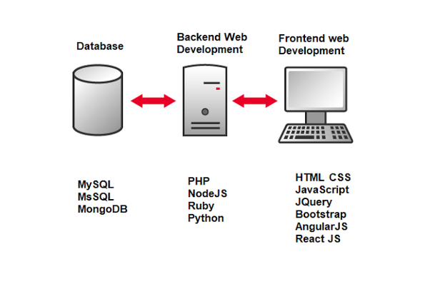 Start Your Web Development Career