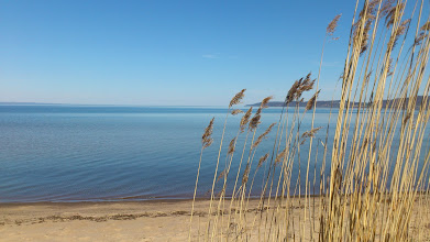 Photo: Early summer day beside the big lake.