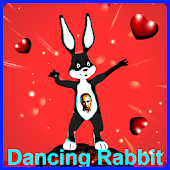 Dancing Rabbit live wallpaper