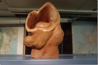 Photo: JAIME CARVAJAL - Holz in Bild und Skulptur. Vernissage am 20.2.2015. Foto: Herta Haider