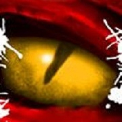 Dragon's Eye Games avatar image