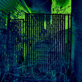 Mystic Gate by Tj Barney - City,  Street & Park  Street Scenes ( cool, mystic, invert, hdr, color, photo, gate )