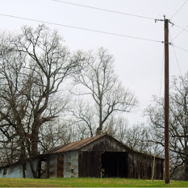 Old barn by Amanda Burton - Buildings & Architecture Decaying & Abandoned ( barns, architecture, landscape )