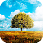 Awesome-Land 2 live wallpaper : Plant a Tree !! icon