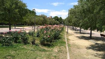 Parque de Paseo de Ginebra