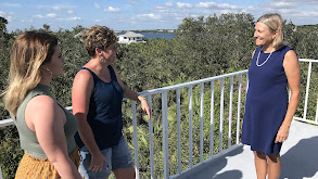 Getaway on Palm Island, Florida thumbnail