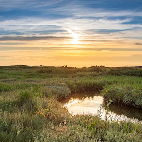 Sunset at Cley by Dave Angood - Landscapes Sunsets & Sunrises ( sunset cley norfolk sky sun blue coloir grass water marshland )