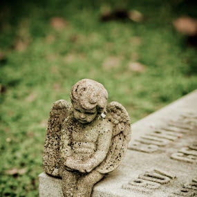 Patiently waiting by Toni Geib - Artistic Objects Still Life ( cherubs, nature, graves, still life, statues, cemetery, landscape, angels )