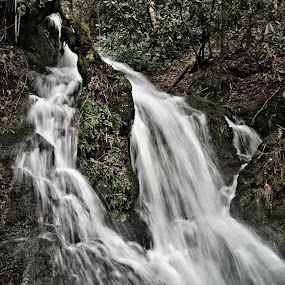 Coldest movements by Chelsea Mason - Landscapes Waterscapes ( smoky mountains, green, waterfall, cold, travel )