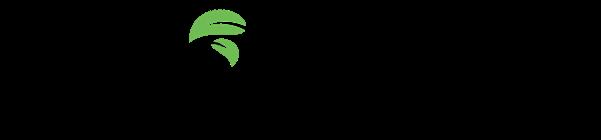 EcoVisio logo small