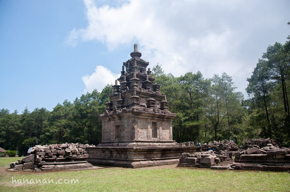 Candi Gendongsongo IV, kompleks candi terbesar di antara yang lainnya.