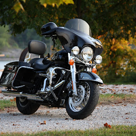 Road King by Leslie Hendrickson - Transportation Motorcycles ( #harleydavidson )