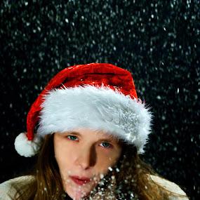 Winter Wishes by Sondra Sarra - Public Holidays Christmas ( happy snowy experience )